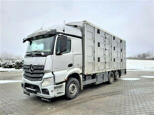 ciężarówka do przewozu bydła MERCEDES-BENZ Actros 2543 6x2
