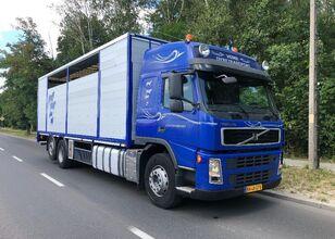 ciężarówka do przewozu bydła VOLVO FM 440 DO BYDLA -ZYWCA