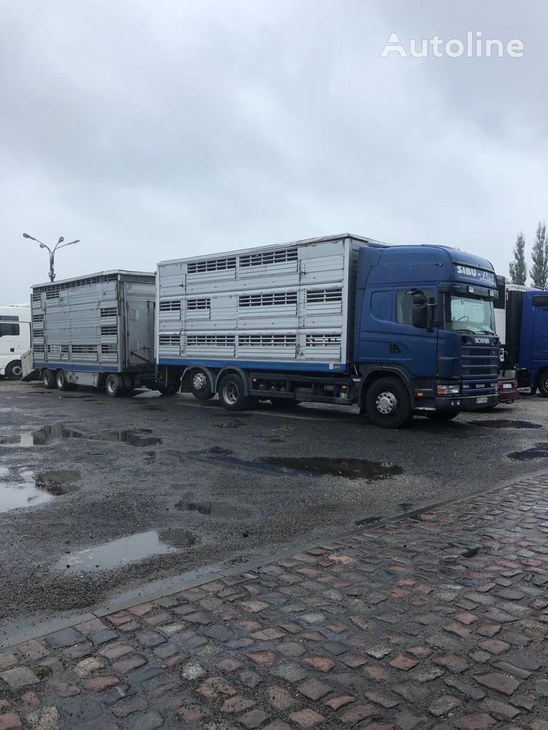 ciężarówka do przewozu bydła SCANIA 124-420 + przyczepa do przewozu zwierząt