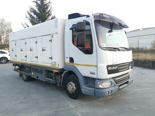 ciężarówka do przewozu lodów DAF 45.220 SURGELATI ATP 10/2024 - 120QLI