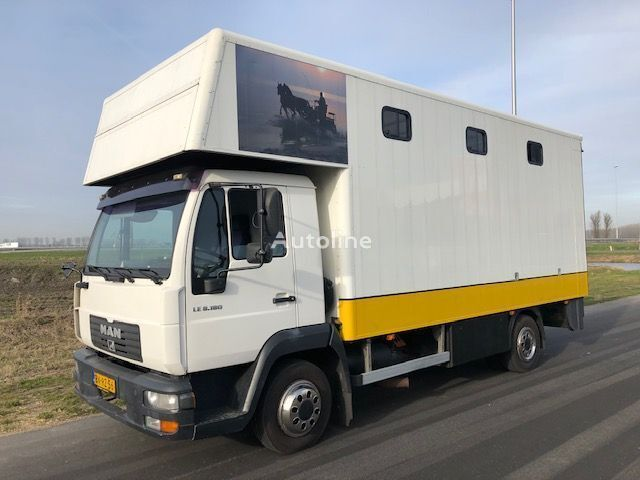 koniowoz MAN LE8-180